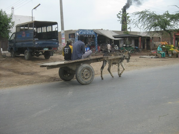 Donkey carts are still a very common form of transportation in rural Pakistan.