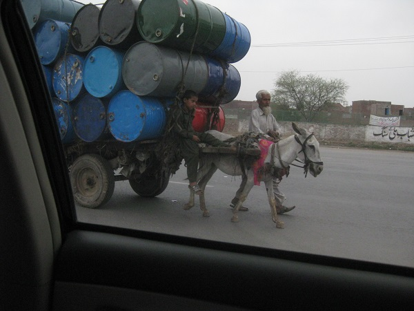 While donkey cart transportation in rural Pakistan is common, this poor donkey seemed to be pulling more than his fair share of the workload.