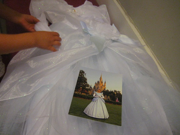 Cinderella dress and photo