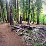 Granlibakken Resort in Lake Tahoe is Tranquil, Rustic, and Full of Adventure