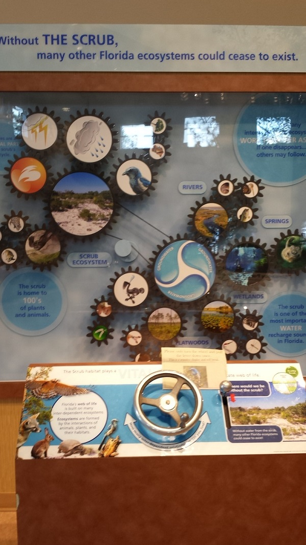 Lyonia Environmental Center & Preserve - without ecosystems