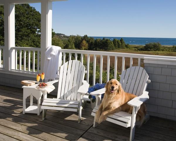 Pet Friendly Inn by the Sea